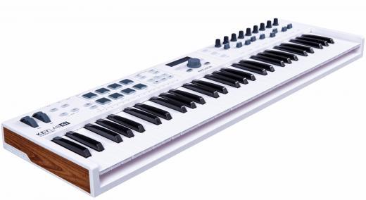 61 notas con controles prácticos extensos, 8 pads de rendimiento, conectividad MIDI / USB, software Analog Lab Virtual Instrument